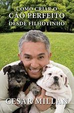 COMO CRIAR O CAO PERFEITO DESDE FILHOTINHO